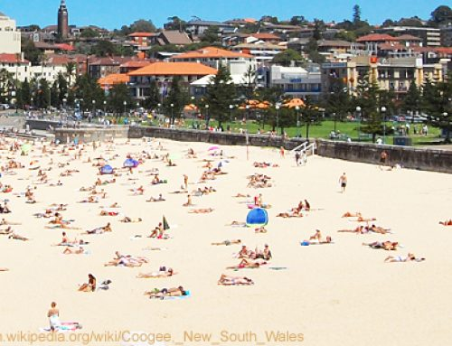 International education beats tourism in revenue for New South Wales